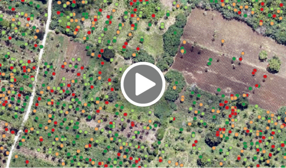 Deep learning with ArcGIS Pro for tree counting and building extraction video card